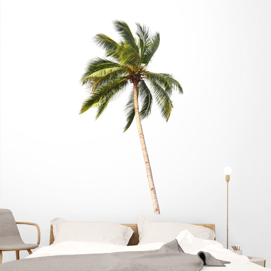 Coconut tree Wall Decal