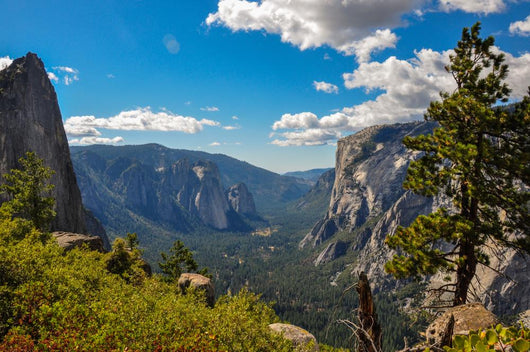 Gorgeous Yosemite National Park