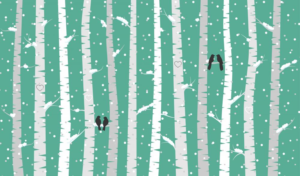 Vector Birch or Aspen Trees with Snow and Love Birds  Wall Mural