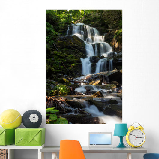 beautiful waterfall comes out of a huge rock in the forest Wall Mural
