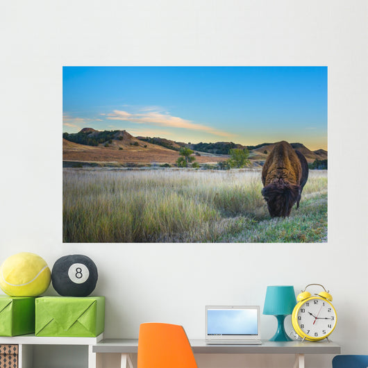Badlands Bison Wall Mural