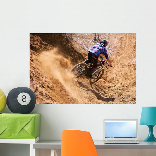 Mountainbiker rides in gorge on desert Wall Mural
