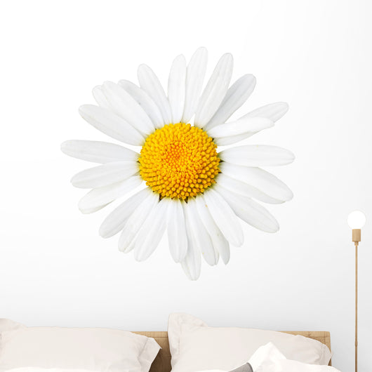 Daisy Macro Wall Decal