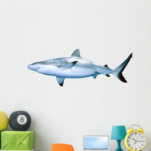 Shark Wall Decal