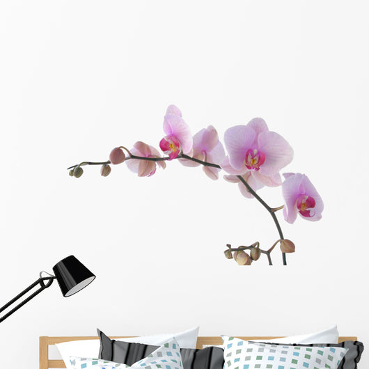 Flower Decals - Bunch of orchid with lila flowers Wall Decal