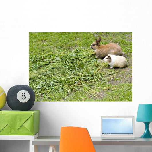 Rabbit and guinea pig Wall Mural