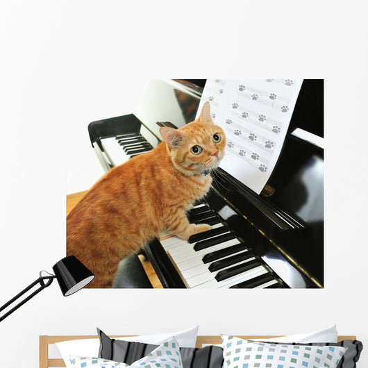 Cute Piano Cat Wall Mural