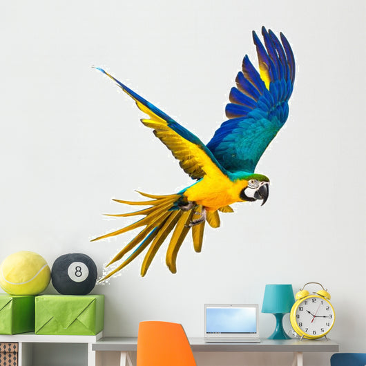 Colourful Flying Parrot White