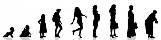 Female Aging Evolution Wall Decal