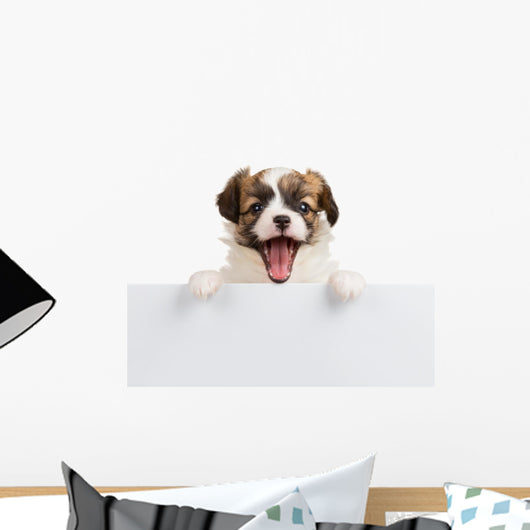 Puppy Papillon with open mouth Wall Decal