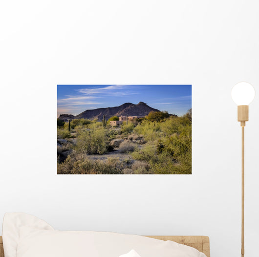 Adobe Style Home Southwest Wall Mural
