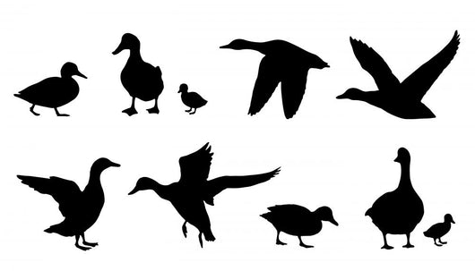 Duck Silhouettes Wall Decal Sticker Set