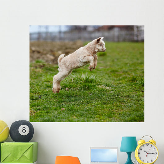 Baby Goat Jumping Wall Decal