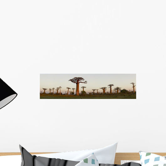 Baobab Alley Madagascar Wall Decal Panoramic Wall Decal