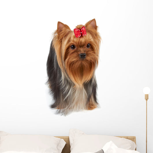 Dog with Large Beautiful Wall Decal