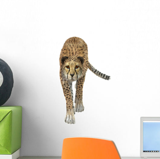 Cheetah Wall Decal Design 4
