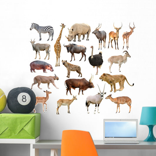 Africa Animals Wall Stickers