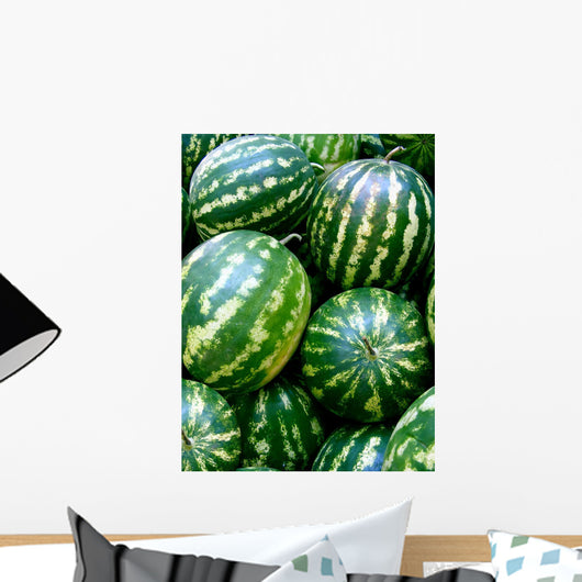 Watermelons Wall Decal