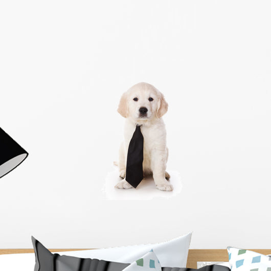Golden Retriever Puppy White Wall Decal