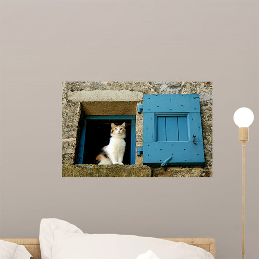 Cat Window Wall Decal