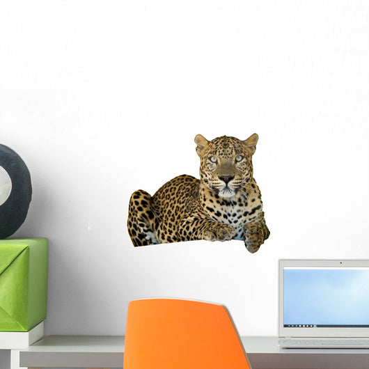 Leopard Wall Decal