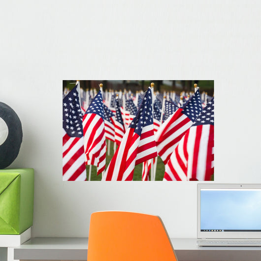 Stars and Stripes Wall Decal