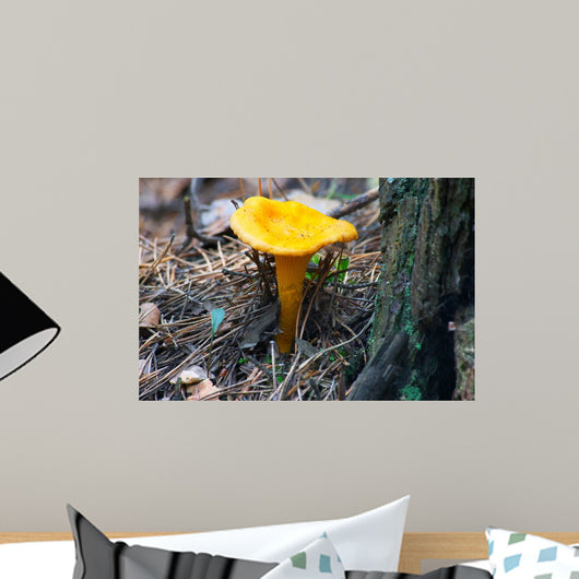 Mushroom Chanterelle Wall Decal