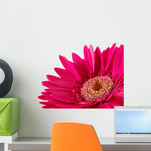 Up Pink Gerber Daisy Wall Decal