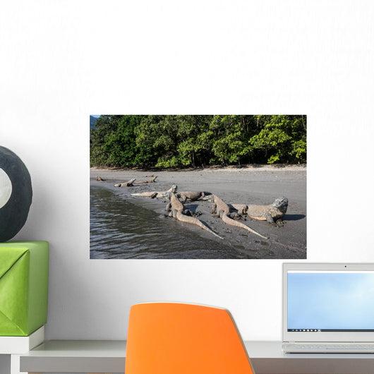 Komodo Dragons Waterline Indonesia Wall Decal