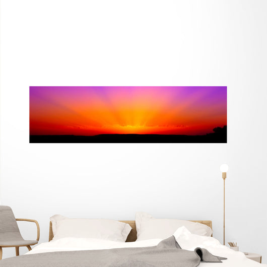 Bright Orange-magenta Sunrise Wall Decal Panoramic