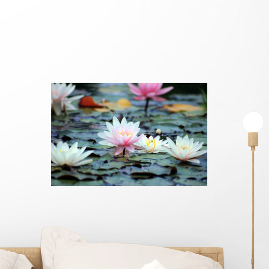 Pond Wall Decal Design 1