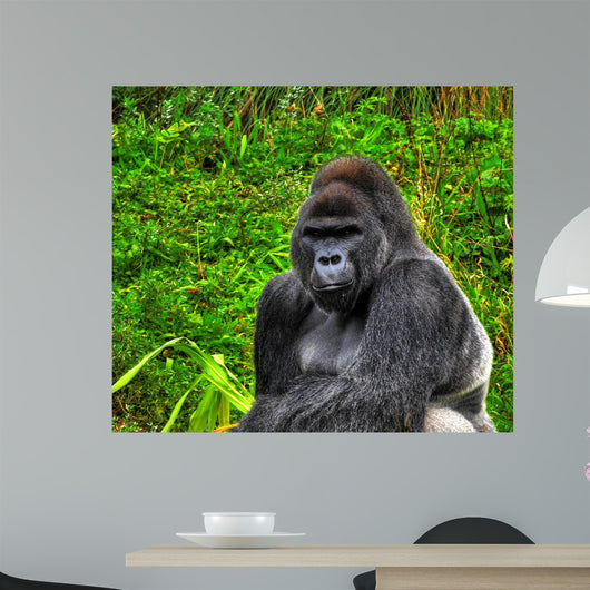 Hdr up Image Male Wall Decal