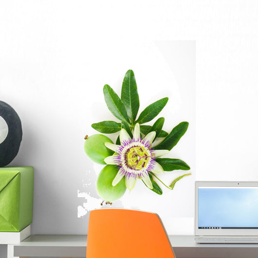 Passion Flower Wall Decal