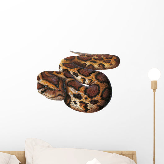 Asian Python Snake Wall Decal