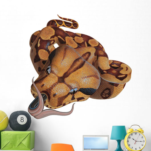 Boa Constrictor Snake Wall Decal