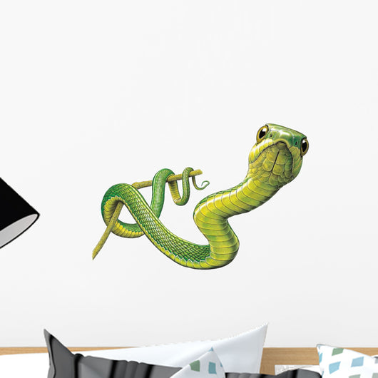 Boolslang Snake Wall Decal