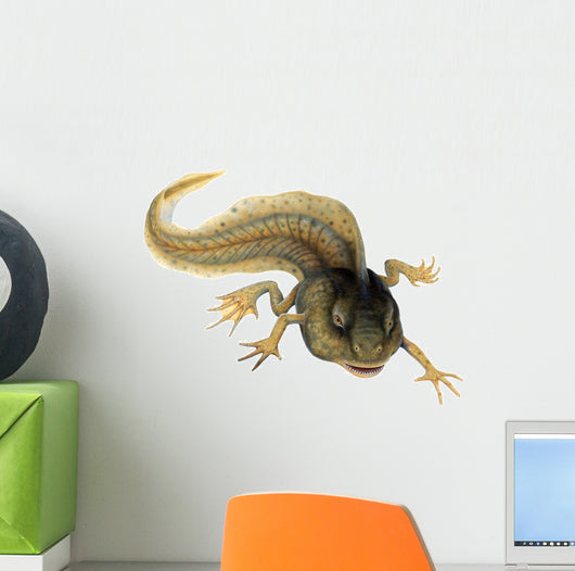 Paradoxical Frog Tadpole Wall Decal