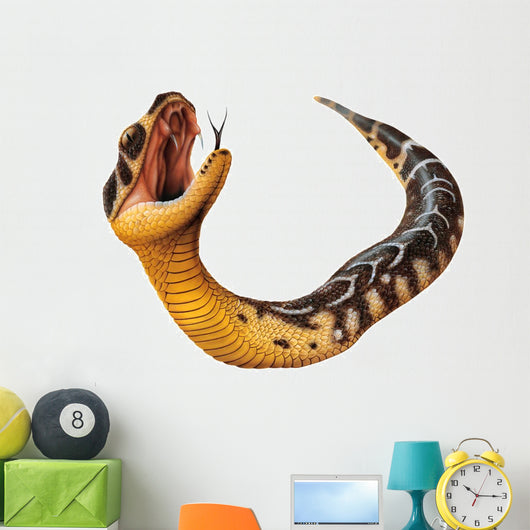 Puff Adder Snake Bitis Arietans Wall Decal