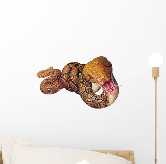 Reticulated Python Snake Wall Decal