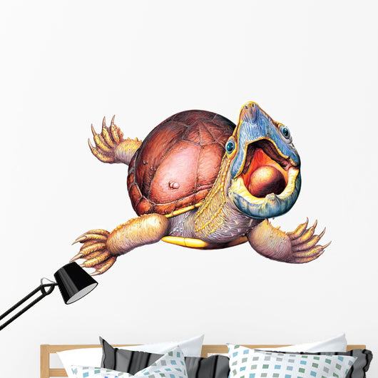 Stinkpot Turtle Wall Decal
