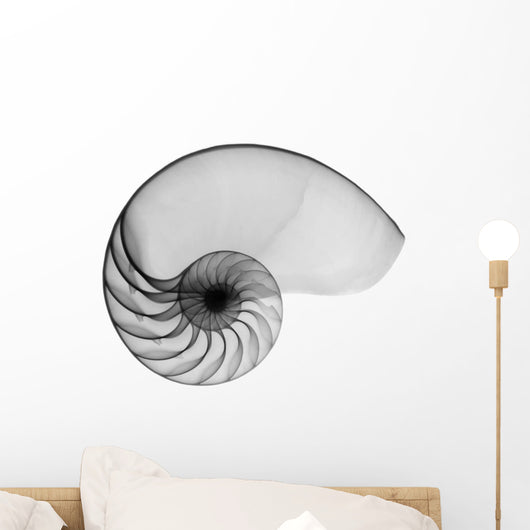 Nautilus Shell Lite X-Ray Wall Decal