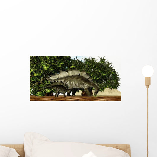 Stegosaurus Baby Looks to Wall Decal