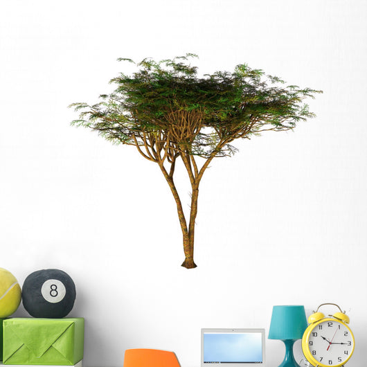 Umbrella Thorn Acacia Tree Wall Mural Wallmonkeyscom