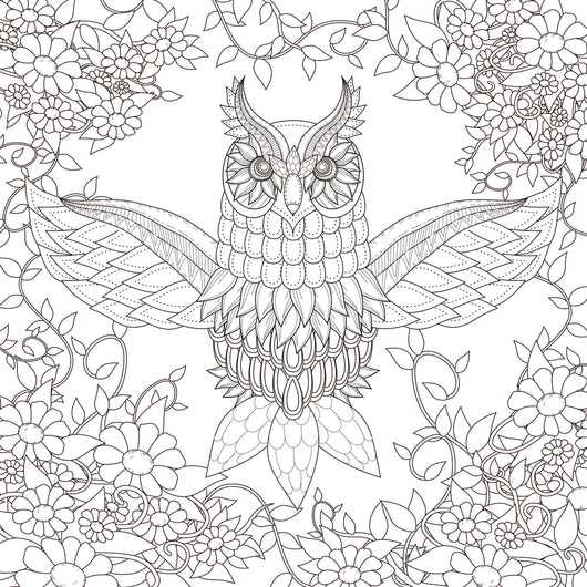 Owl Coloring Page Decal
