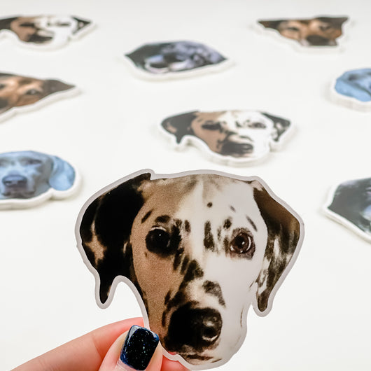 Dog Face Stickers