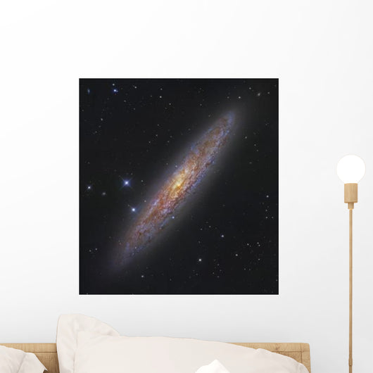 Sculptor Galaxy Ngc 253 Wall Decal