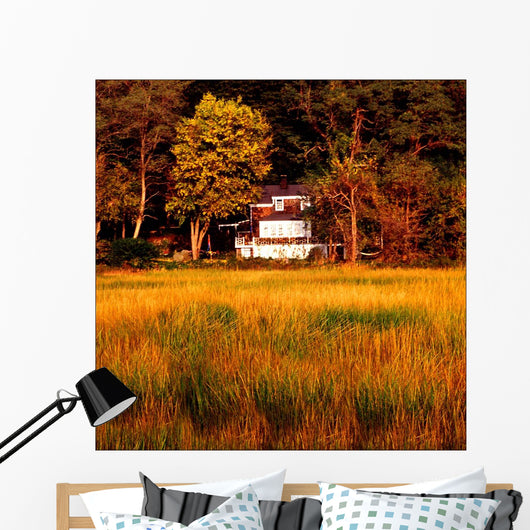 The Look Of Fall Wall Mural
