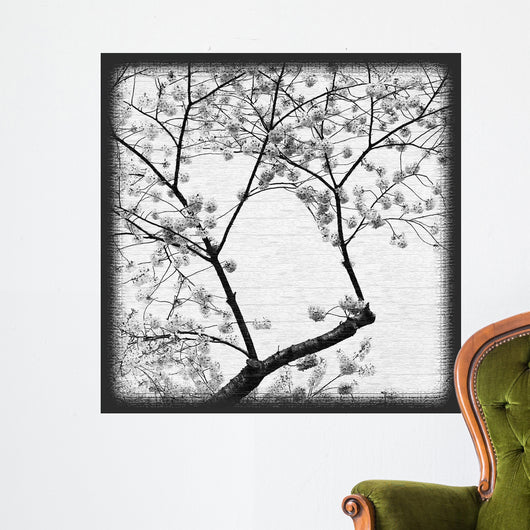 Cherry Blossom Time 2 Wall Mural