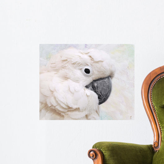 Umbrella Cockatoo Portrait Wall Mural