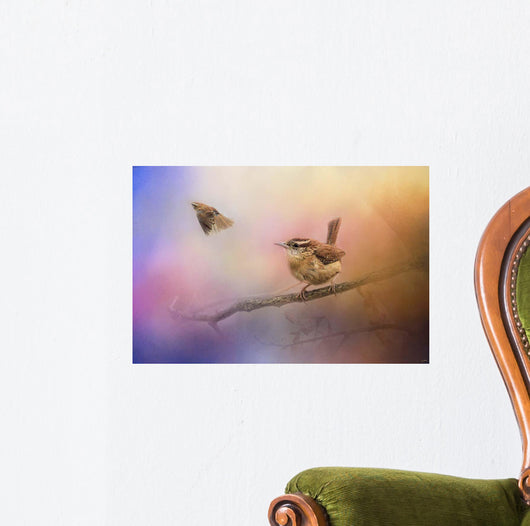 Carolina Wrens Wall Mural